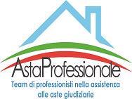 ASTA PROFESSIONALE logo