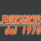 GENNARO D'AUSILIO CAMION 1970 logo