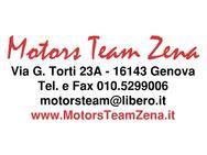 Motors Team Zena logo